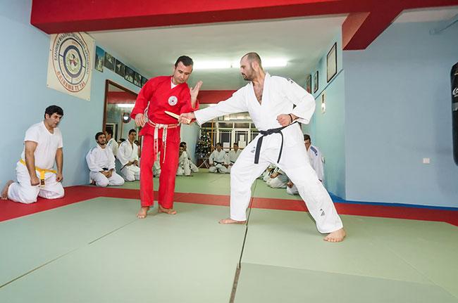 okinawa karate - ju jitsu - apollofanous filoxenos zakynthos by dimitris panagiotopoulos -