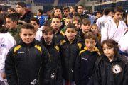 Πανελλήνιο Πρωτάθλημα Ιανουάριος-Φεβρουάριος 2017 (-12,-15) zante budo academy